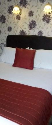 Single-Room-2